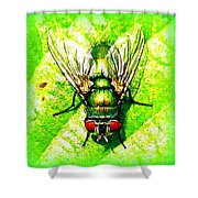 Green Bottle Fly Shower Curtain