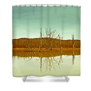Green Bottom In Winter Shower Curtain