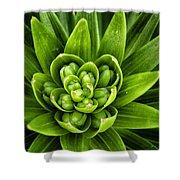 Green Buds Shower Curtain