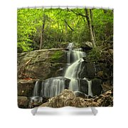 Green Canopy Above Laurel Falls Shower Curtain