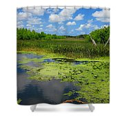 Green Cay Nature Preserve Beauty Shower Curtain