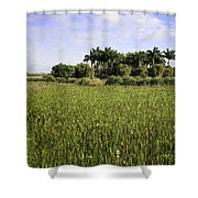 Green Cay Wetlands Shower Curtain