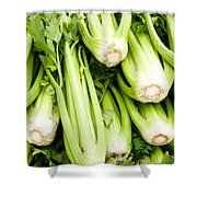 Green Celery On Display Shower Curtain