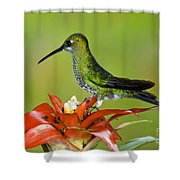 Green-crown Brilliant Female Shower Curtain