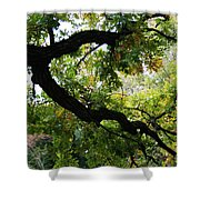 Green Days Shower Curtain
