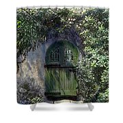 Green Door Shower Curtain by Terry Reynoldson