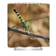 Green Dragonfly Square Shower Curtain