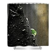 Green Droplet  Shower Curtain