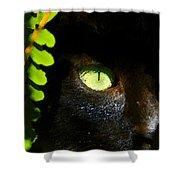 Green Eyed Black Cat Shower Curtain