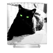 Green Eyed Kitty Shower Curtain