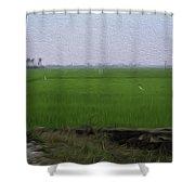 Green Fields With Birds In Kerala Shower Curtain