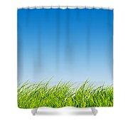 Green Fresh Grass On Blue Sky Panorama. Shower Curtain