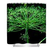 Green Frills II Shower Curtain