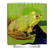 Green Frog 2 Shower Curtain