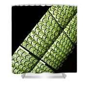 Green Glass Shower Curtain