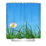 Green Grass And A Flower Shower Curtain