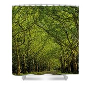 Green Green World Shower Curtain