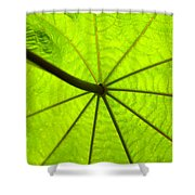 Green Growth Shower Curtain