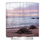 Green Hawaiian Sea Turtles At Sunset - Oahu Hawaii Shower Curtain by Brian Harig
