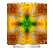 Green Heart Rainbow Light Mandala Shower Curtain