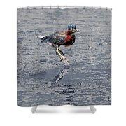 Green Heron In Swannanoa North Carolina Shower Curtain