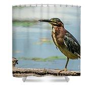 Green Heron Tongue Shower Curtain