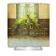 Green House Shower Curtain by Margie Hurwich