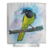 Green Jay Bird Texas Shower Curtain