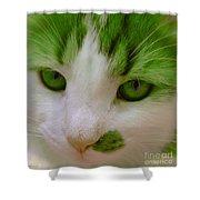 Green Kitten Shower Curtain