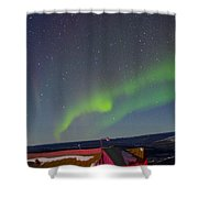 Green Lady Dancing 12 Shower Curtain