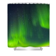 Green Lady Dancing 30 Shower Curtain