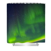 Green Lady Dancing 31 Shower Curtain