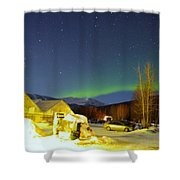 Green Lady Dancing 34 Shower Curtain