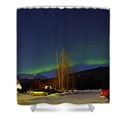 Green Lady Dancing 35 Shower Curtain