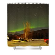 Green Lady Dancing 36 Shower Curtain