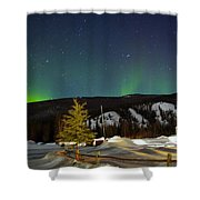 Green Lady Dancing 42 Shower Curtain