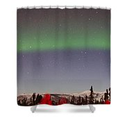 Green Lady Dancing 43 Shower Curtain