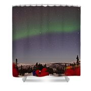Green Lady Dancing 45 Shower Curtain