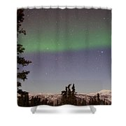 Green Lady Dancing 46 Shower Curtain