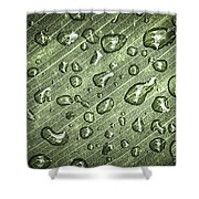 Green Leaf Abstract With Raindrops Shower Curtain