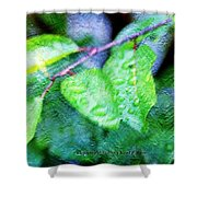 Green Leaf As A Painting Shower Curtain