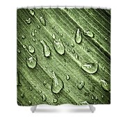 Green Leaf Background With Raindrops Shower Curtain