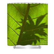 Green Leaves Series 3 Shower Curtain