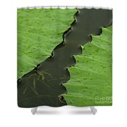 Green Leaves Series  4 Shower Curtain