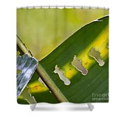 Green Leaves Series  5 Shower Curtain