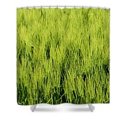 Green Nature Shower Curtain