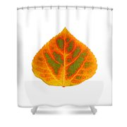 Green Orange Red And Yellow Aspen Leaf 5 Shower Curtain
