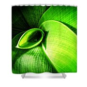 Green Paradise - Leaves By Sharon Cummings Shower Curtain
