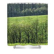 Green Peace Shower Curtain by Davorin Mance