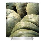 Green Pumpkins Shower Curtain